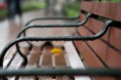 关闭一条长凳在公园在雨以后 库存图片