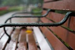 关闭一条长凳在公园在雨以后 免版税库存图片