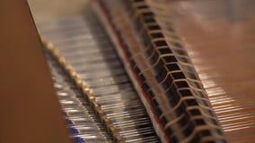 关闭一架大平台钢琴的内在工作的射击 锤子碰撞串作为射击 16台仪器音乐会 股票视频
