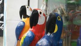 关闭三只大被雕刻的木金刚鹦鹉在里约 股票录像