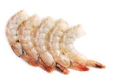 关闭三只新鲜的虾。 免版税库存照片