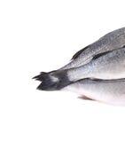 关闭三条尾巴新鲜的雪鱼鱼。 图库摄影