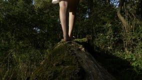 关闭与妇女走的赤脚的脚在树熊青苔的在森林自然- 股票视频
