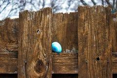 关闭与心脏的装饰的鸡蛋,掩藏在复活节彩蛋狩猎的木篱芭在后院 库存图片