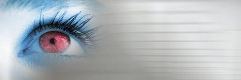 关闭与模糊的灰色转折的蓝色和桃红色眼睛 库存照片