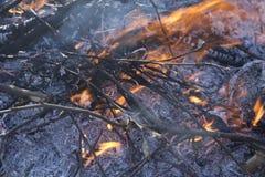 关闭与火焰和炭烬的死的火 免版税库存照片
