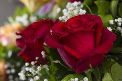关闭与空间的红色玫瑰文本的13 库存照片