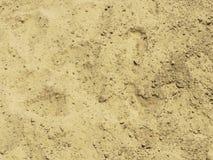 关闭与脚鞋子印刷品纹理的被猛撞的砂土地面 图库摄影