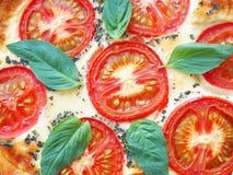 关闭与菜和乳酪的土气乳蛋糕饼 传统乳蛋饼酥皮点心 食物背景用红色蕃茄和新鲜的b 库存图片