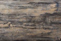 关闭与被去除的所有吠声的一本各式各样的苏格兰松树树日志 免版税库存照片