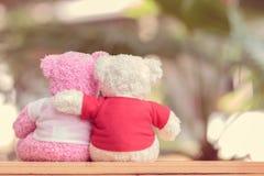 关闭两头熊玩偶 图库摄影