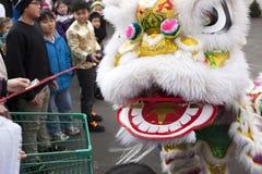 关闭中国狮子。 图库摄影