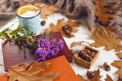 关闭书和茶看法用桔子 秋叶,在木背景的温暖的围巾 库存图片