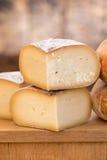 关闭乳酪 库存图片