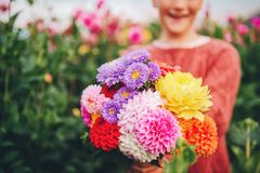 关闭五颜六色的大丽花和菊花花花束的图象 免版税库存图片