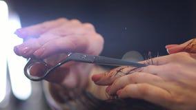 关闭人` s头发在美容院的切口剪刀 框架 关闭理发在头发交谊厅 专业人员 股票录像