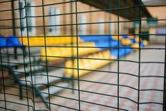 关闭从导线的金属网型篱芭在盛大立场的空的蓝色和黄色体育位子背景  免版税库存照片