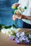 关闭做与紫色番红花的迷人的快乐的女性售货员花束 库存照片