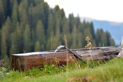 关闭做与连续管子的水森林水池浇灌和看法的木日志的图象后边 免版税库存照片