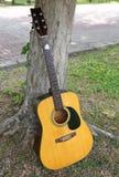关闭古典吉他在树下 免版税库存照片