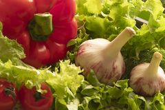 关闭各种各样的五颜六色的新鲜蔬菜 免版税库存图片