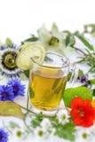 关闭各种各样的新鲜的草本和清凉茶在白色新鲜的药用植物和在捆绑 准备药用植物 库存照片