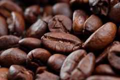 关闭咖啡豆 免版税库存照片
