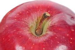 关闭在一个红色苹果的小腿 库存图片