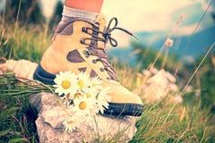 关闭在一双远足的鞋子和束od雏菊的一只妇女脚在山行迹 免版税库存照片