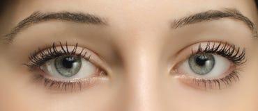 关闭在一名美丽的蓝色妇女眼睛 免版税库存照片