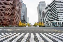 关闭在东京驻地的商业大厦包围的行人穿越道 免版税库存图片