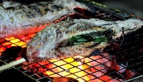 关闭在假日烤了与盐,在乡下,健康食物的可口鲜鱼的新fishs 免版税库存图片