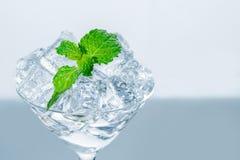 关闭在冰块的薄荷的叶子在玻璃 库存图片