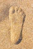 关闭在含沙的脚步在海滩 免版税库存照片