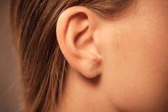 关闭在女性耳朵 库存图片