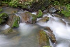 关闭在岩石的缓慢流动的水 库存图片