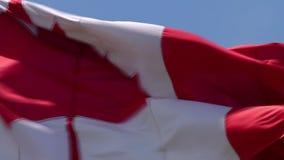 关闭在挥动在蓝天背景的风的加拿大的美丽如画的红色白色槭树旗子国家标志横幅的射击 股票视频