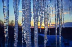 关闭在日落冬天天空五颜六色的背景的冰柱  免版税库存照片