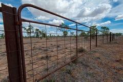 关闭在澳洲内地物产的一个绵羊和牛门 库存图片