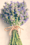 关闭在白色木背景的淡紫色花束 例证百合红色样式葡萄酒 免版税库存照片