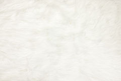 关闭在白色毛皮织品纹理背景 库存照片