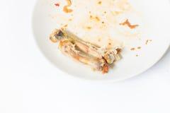关闭在白色盘的鸡骨头用用浪费的食物 库存图片