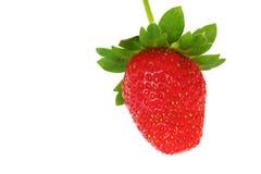 关闭在白色背景隔绝的新鲜的草莓 库存图片