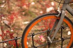 关闭在篱芭停放的一老,美好的bycicle在公园 图库摄影