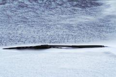 关闭在雪盖的黑汽车风档刮水器 库存图片
