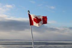 关闭在风的加拿大旗子在冬天大海 库存照片