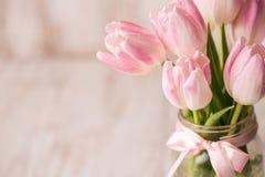 关闭在玻璃瓶子花瓶的桃红色和白色淡色郁金香与 免版税库存图片