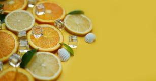 关闭在Yel的柠檬橙色叶子柑橘冰海壳柑橘 免版税库存照片
