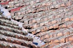 关闭地衣被盖的瓦片和被镀锌的谷铁 免版税库存图片