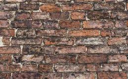 关闭墙壁 免版税库存照片